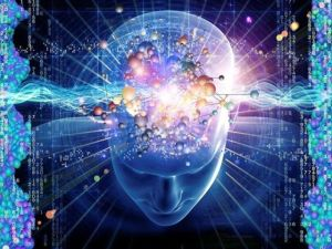 evolución conciencia
