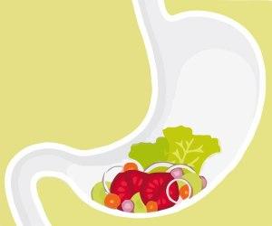 jaume-queral-enzimas-digestivas