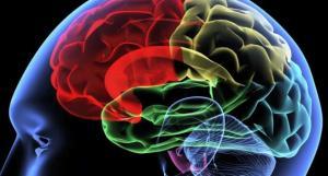 brain-music-djmag