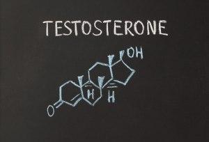 Testosterone_N1606_ts453152123