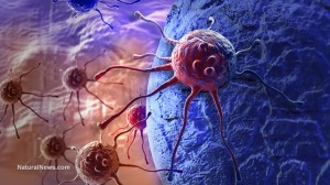 cancer-cell-attack-body-virus-bacteria
