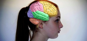 woman-female-brain-by-amenclinics
