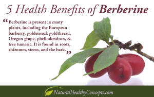 berberine-post