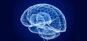 brain-image-by-alexandr-mitiuc-702x336